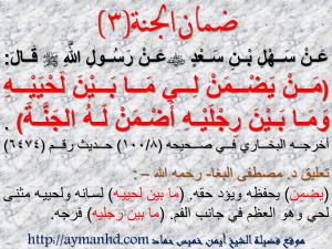 فضيلة الشيخ / أيمن خميس حماد ( قاضي شرعي – محاضر جامعي – داعية إسلامي )